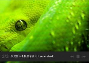 第17款插件:supersized.js 在浏览器中全屏显示图片插件