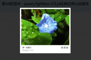 第35款插件:jquery.lightbox.js经典的弹出层插件(参数说明已经翻译成中文)